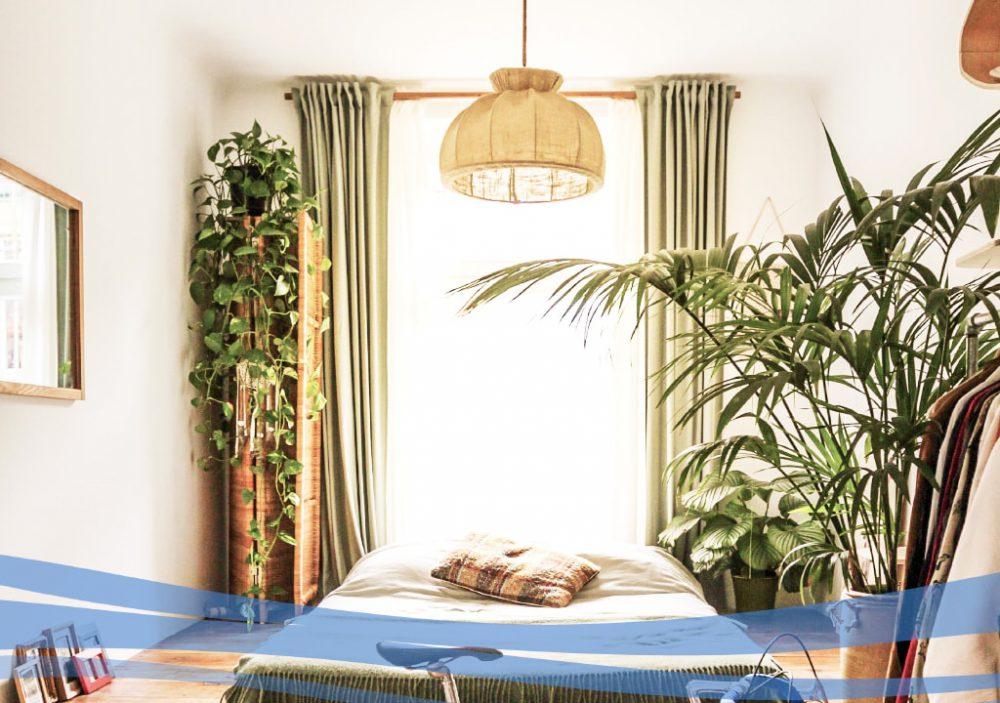 مزایای استفاده از گیاه مناسب در اتاق خواب
